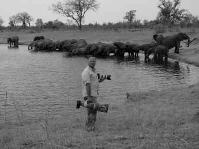 Out of Safari