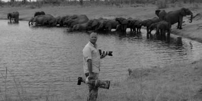 Retour de Safari